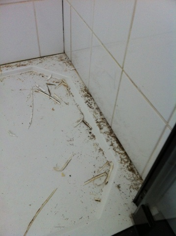 welkom gt projecten gt projecten gt mevr luitjens gt badkamer